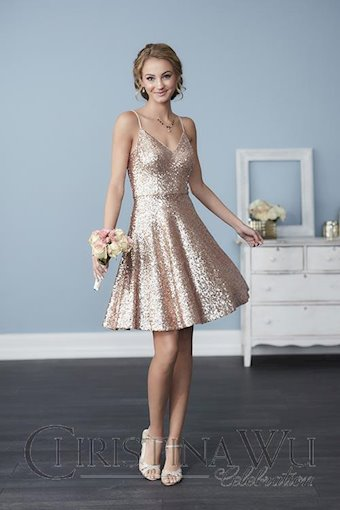 Christina Wu Celebration Style #22761