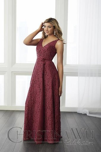 Christina Wu Celebration Style 22793