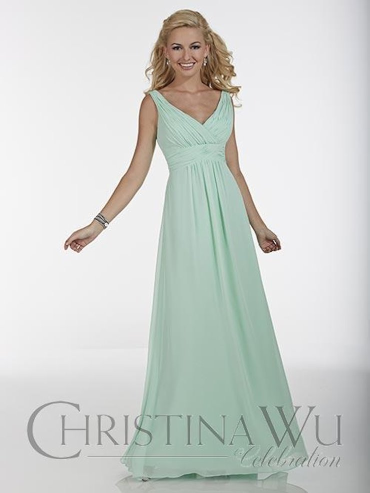 Christina Wu BM40
