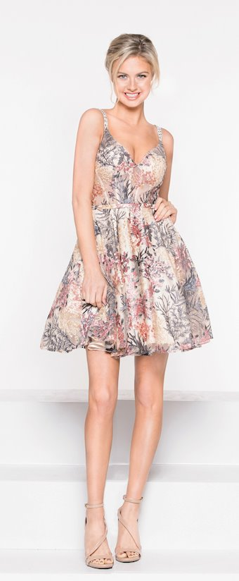 Colors Dress Style #1974