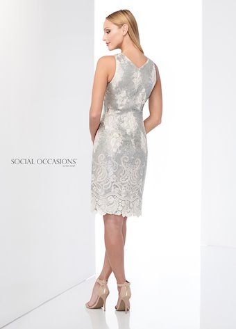 Social Occasions 218803