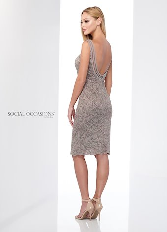 Social Occasions 218817
