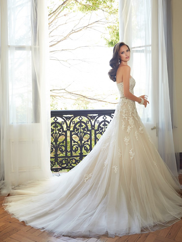 Sophia Tolli Y11552
