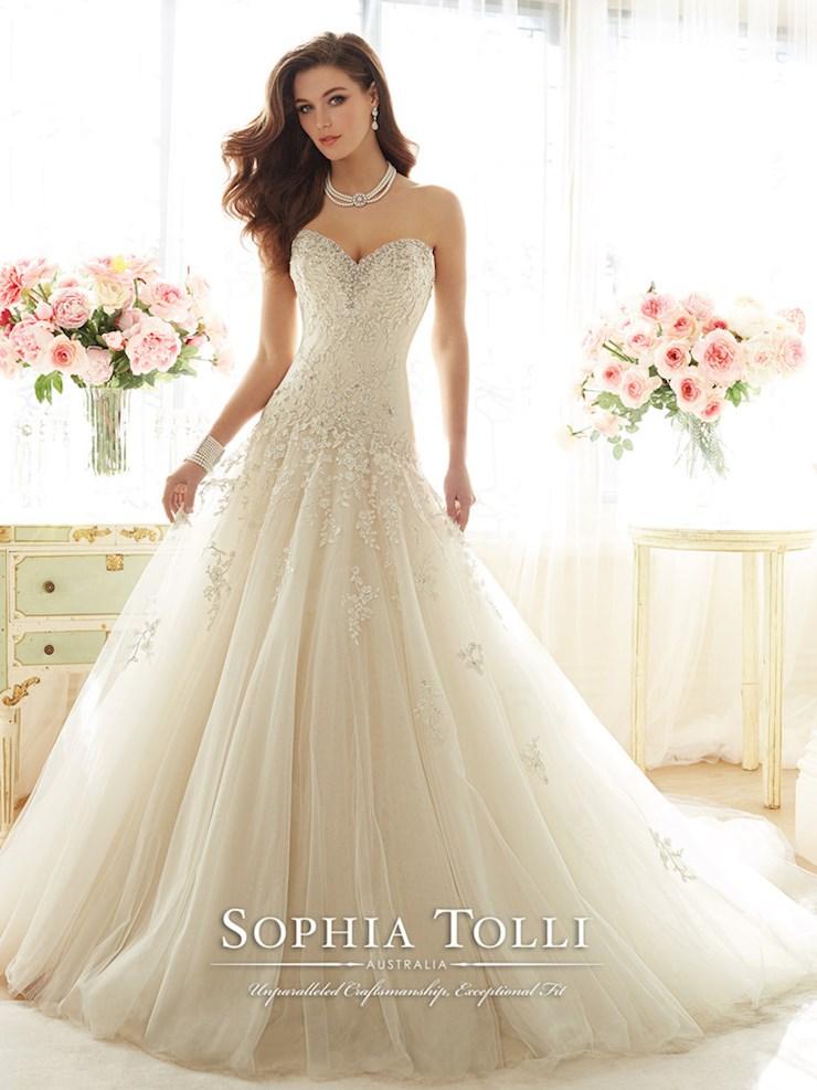 Sophia Tolli Y11637