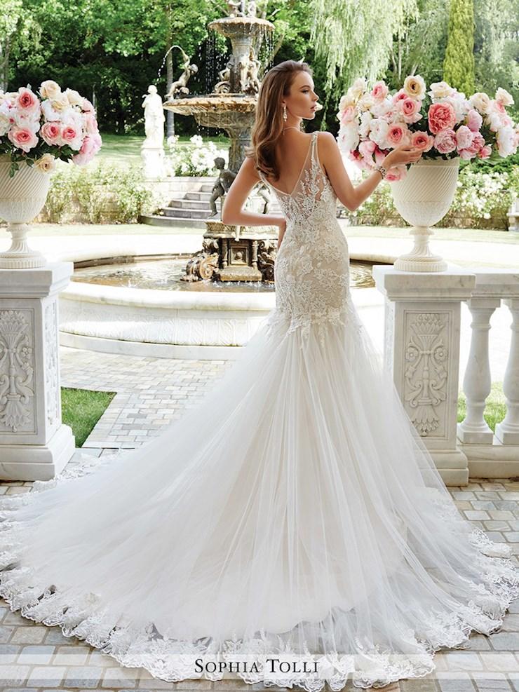 Sophia Tolli Y21665