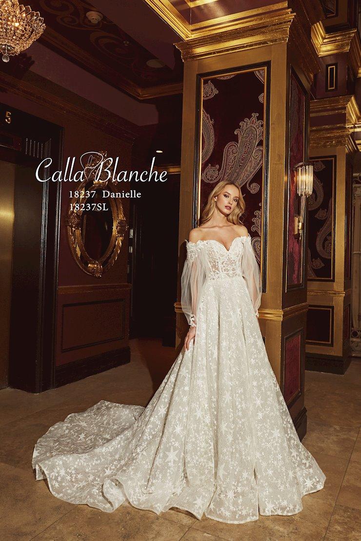 Calla Blanche
