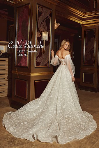 Calla Blanche 18237