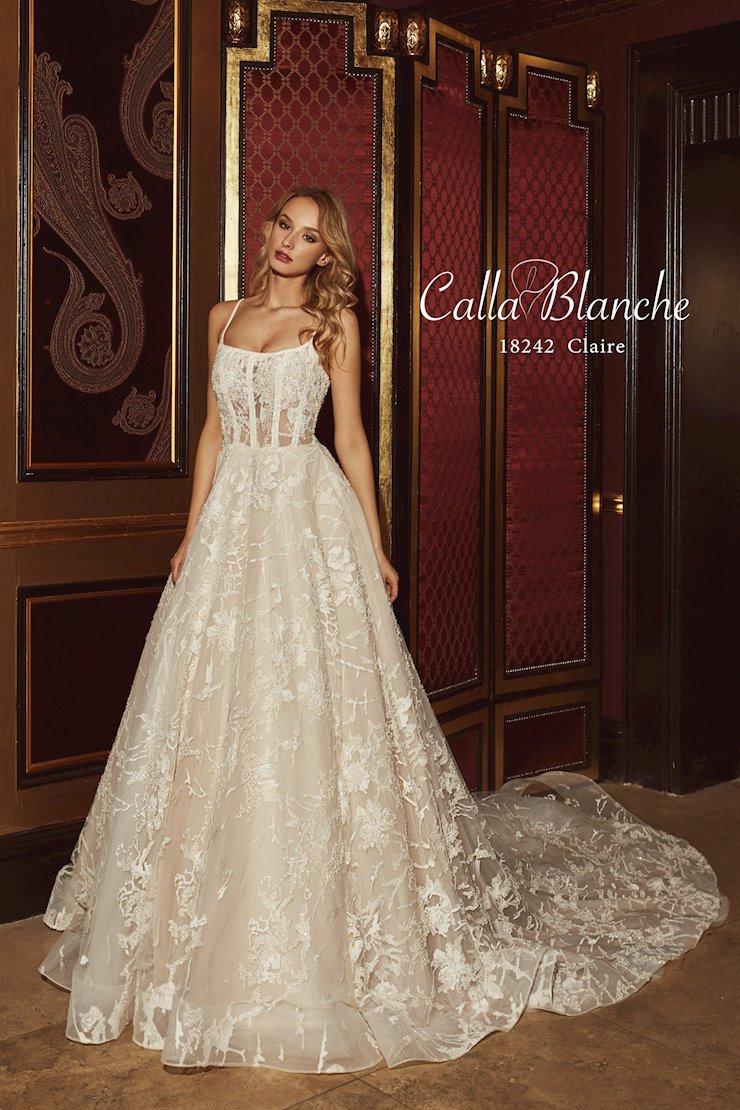 Calla Blanche 18242