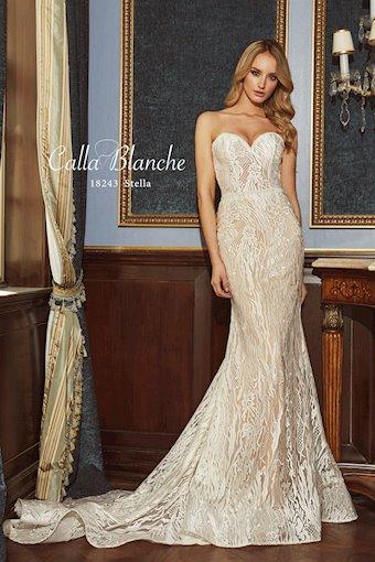 Calla Blanche 18243
