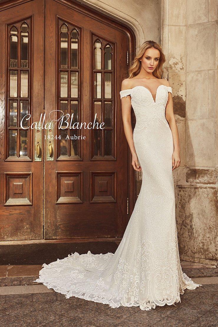 Calla Blanche 18244