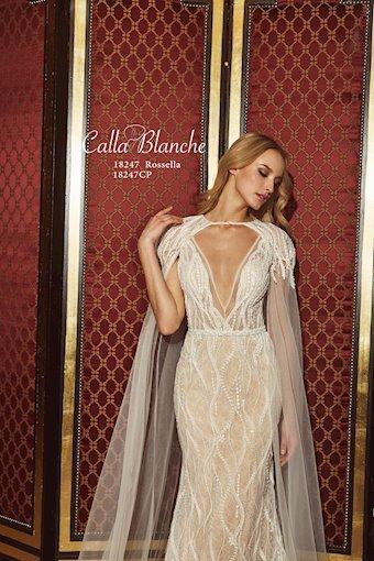 Calla Blanche 18247