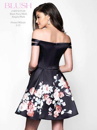 Blush Style: 11609