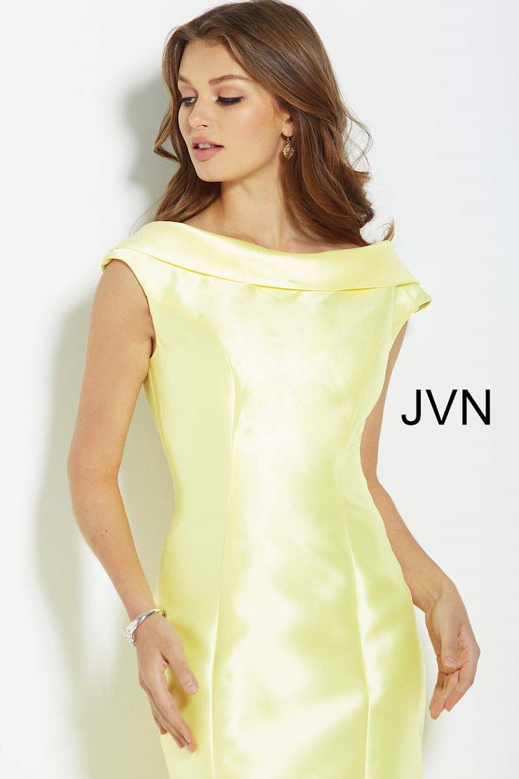 JVN JVN60173