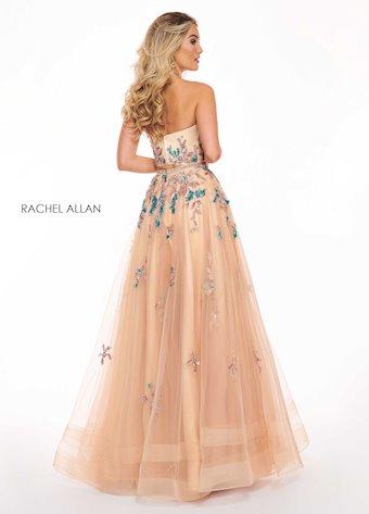 Rachel Allan 6428