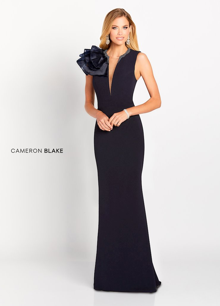 Cameron Blake Style #119645 Fit and Flare Mother's Dress with Plunging V-neck Image