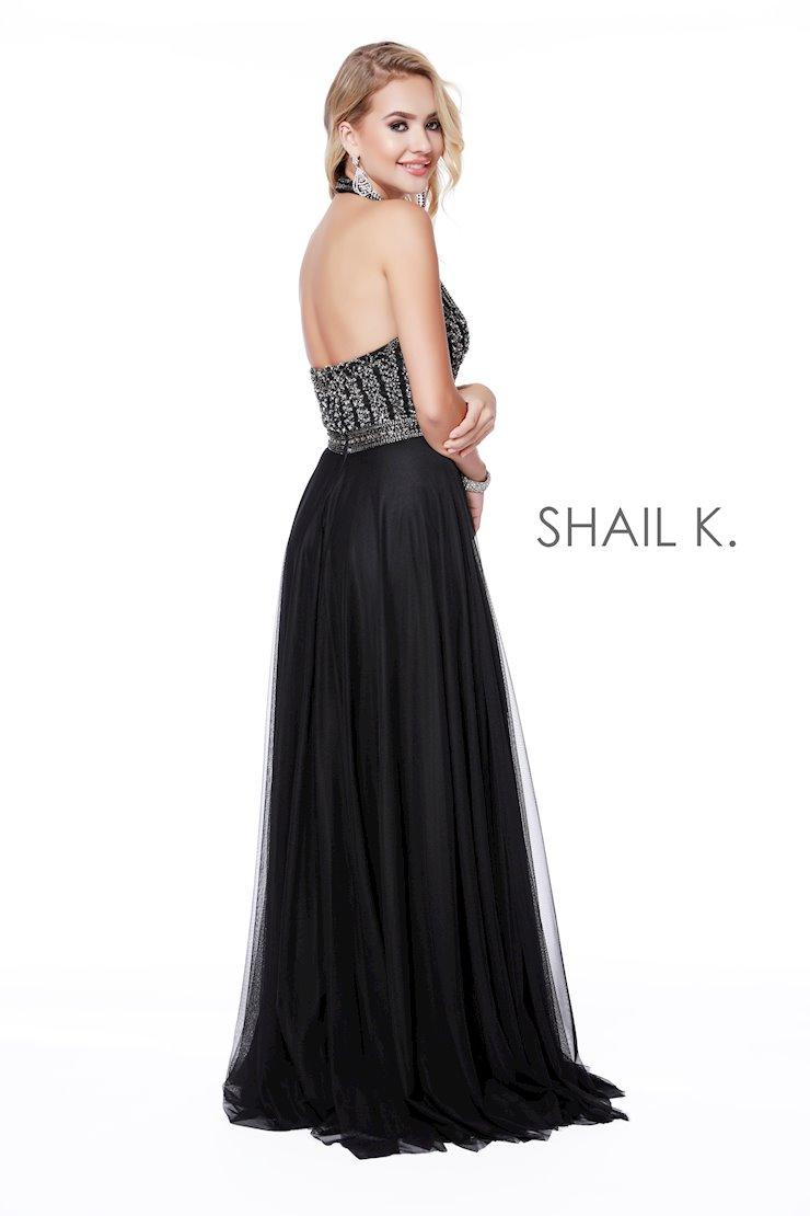 Shail K 12208