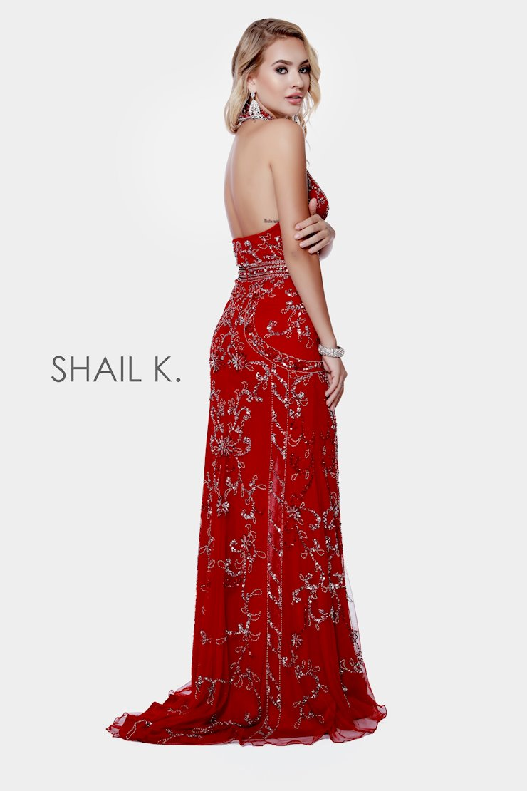 Shail K 12209