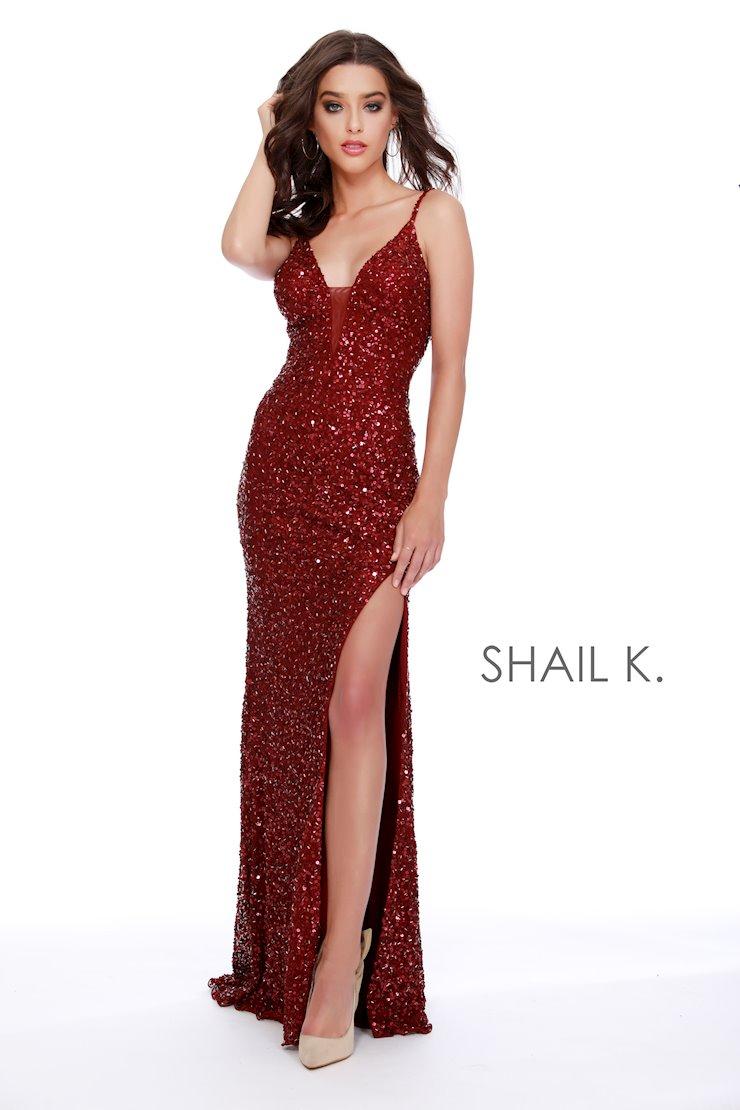 Shail K 12223