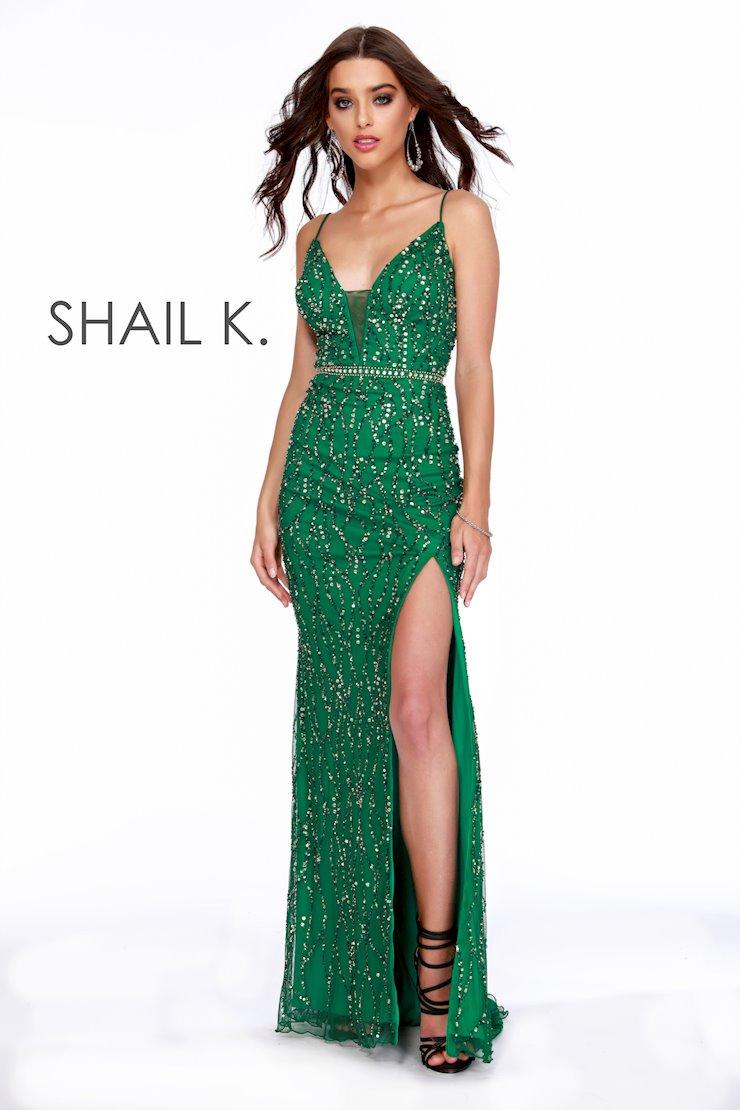 Shail K 12224