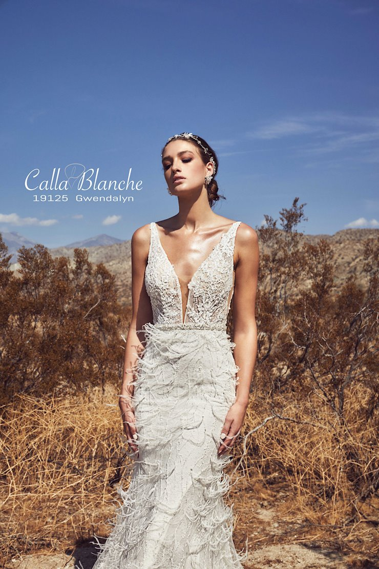 Calla Blanche 19125