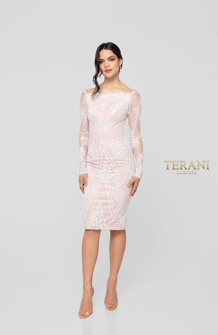 Terani 1911C9001