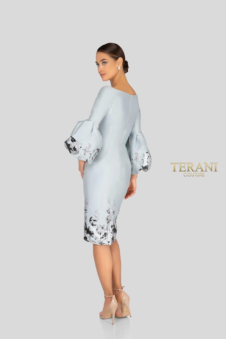 Terani 1911C9016