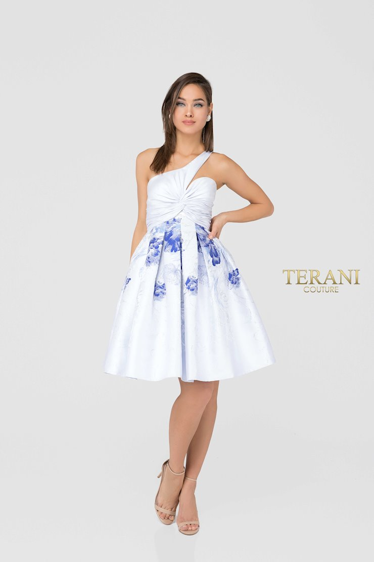 Terani 1911P8001 Image