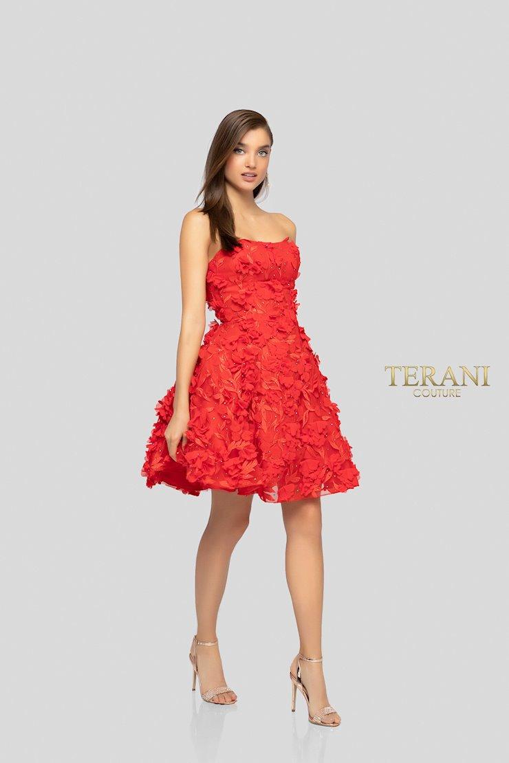 Terani 1911P8057 Image