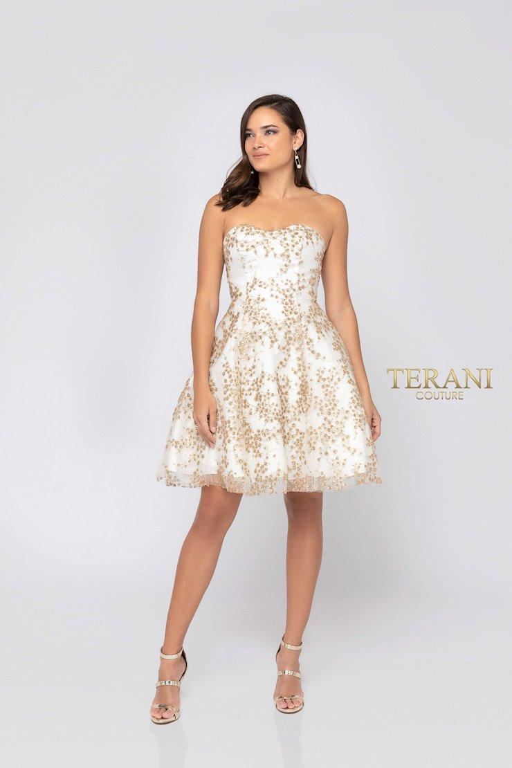 Terani 1911P8073 Image