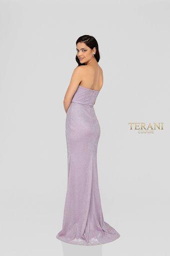 Terani 1911P8173
