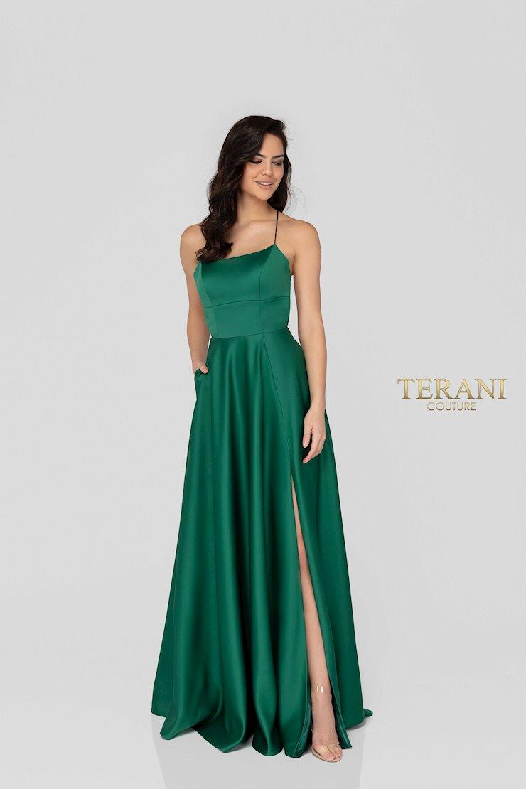 Terani 1911P8178