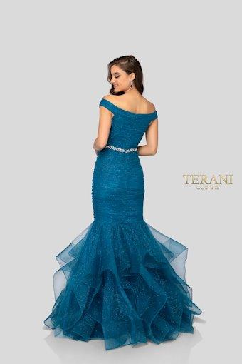 Terani 1911P8366