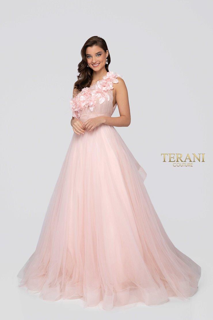Terani 1911P8479