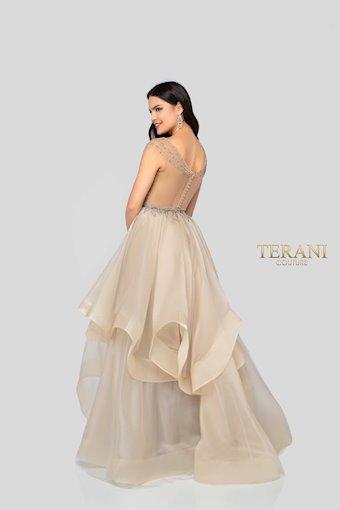 Terani 1911P8500