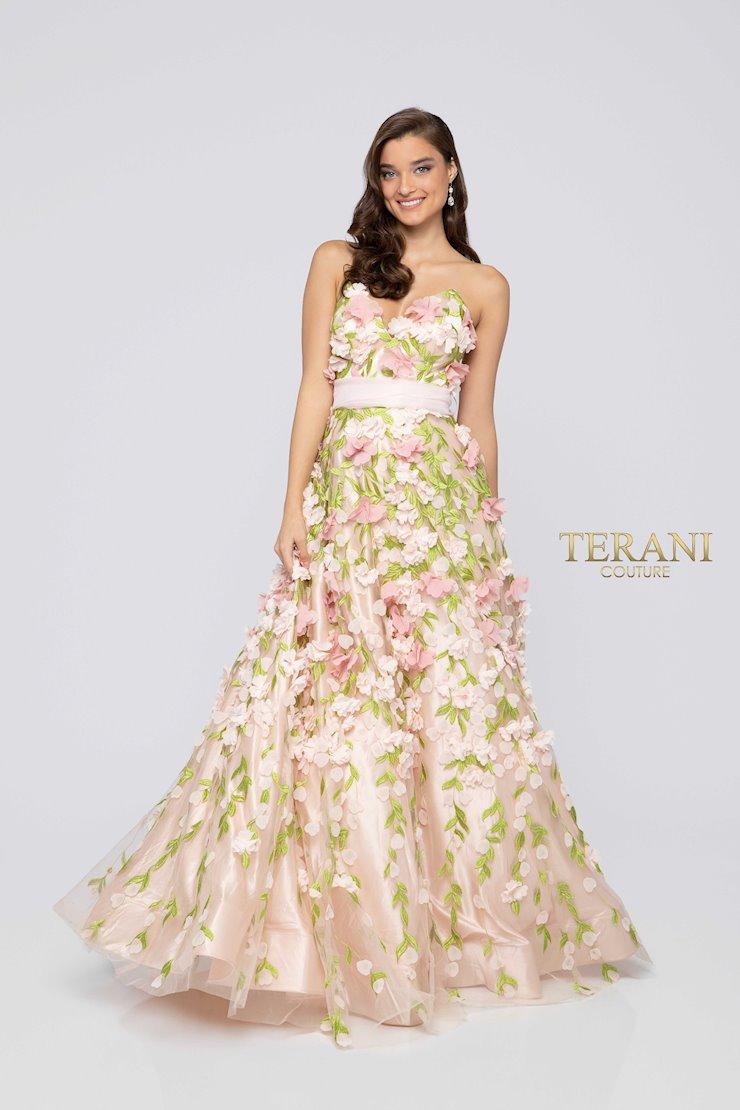 Terani 1911P8546