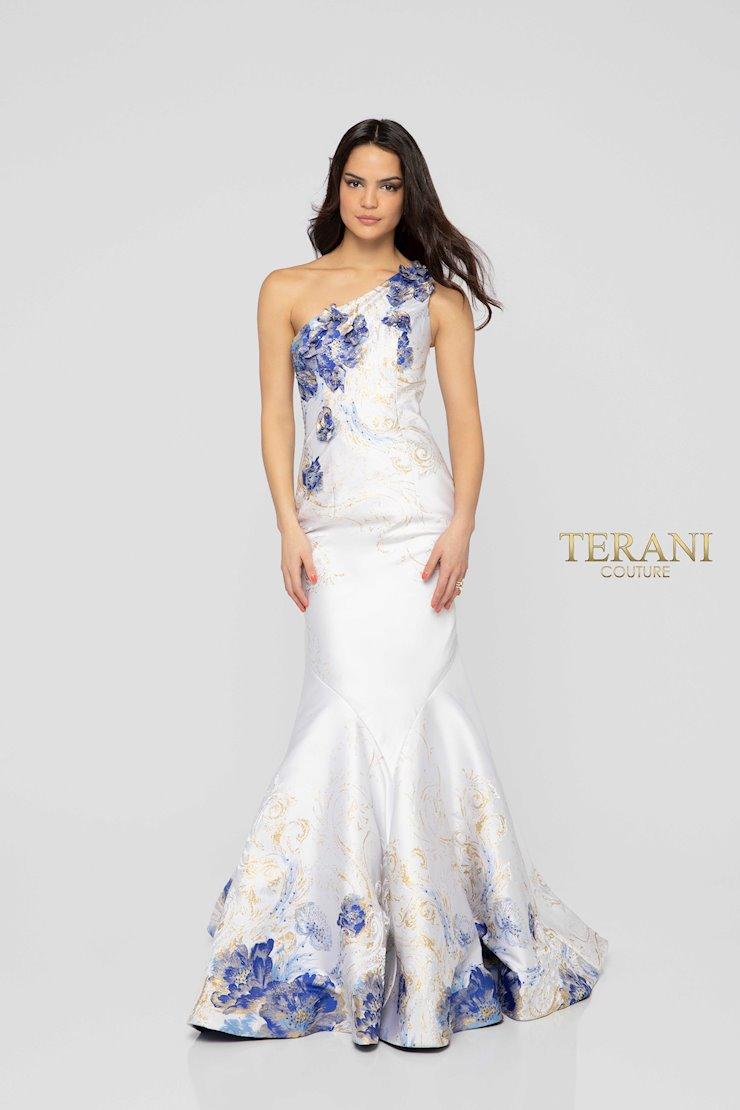 Terani 1911P8637