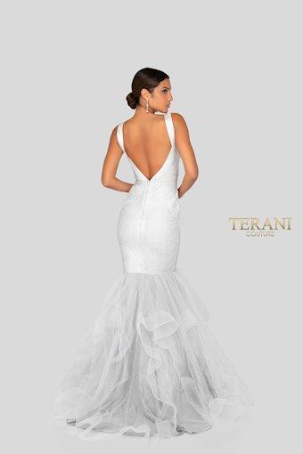 Terani Style #1911P8640