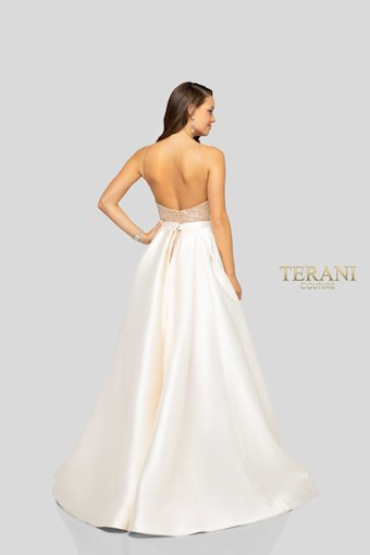Terani 1912P8437