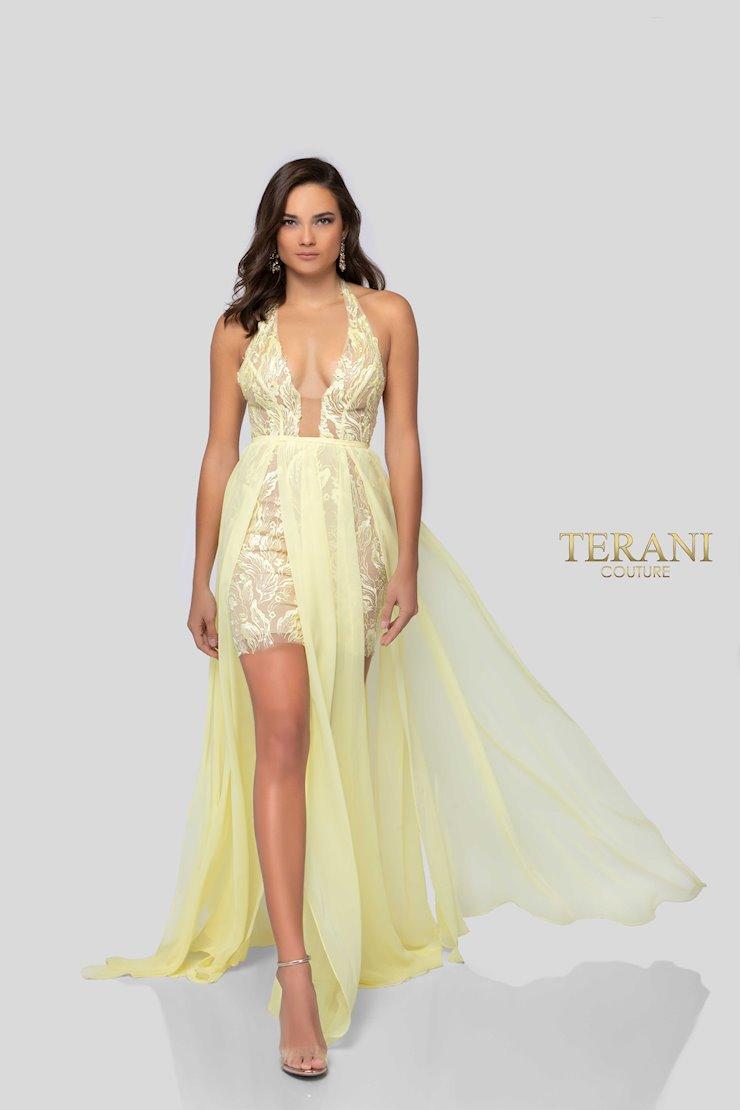 Terani 1913P8314