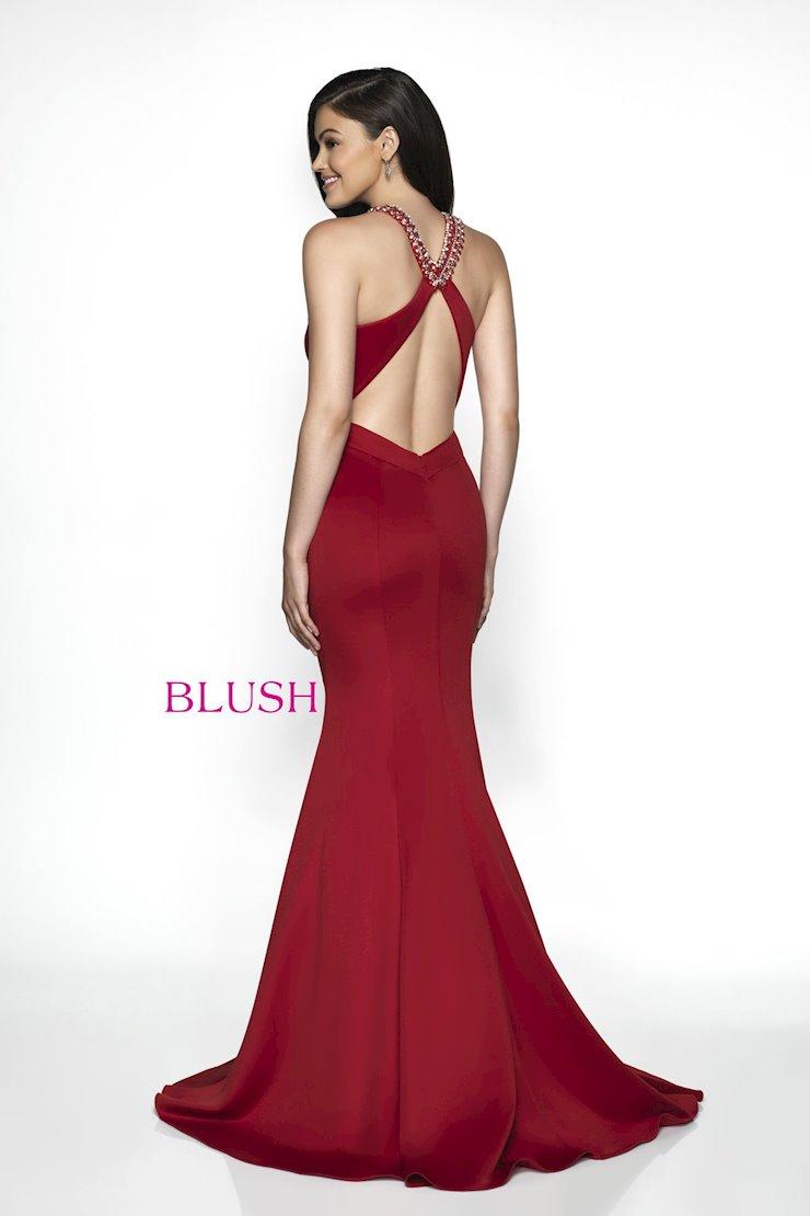 Blush C2025