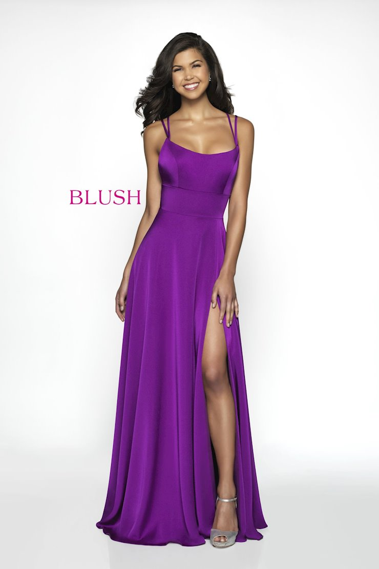 Blush Style No. C2095