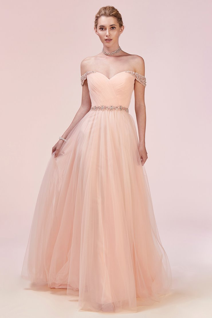 A&L Couture Style #A0531 Image