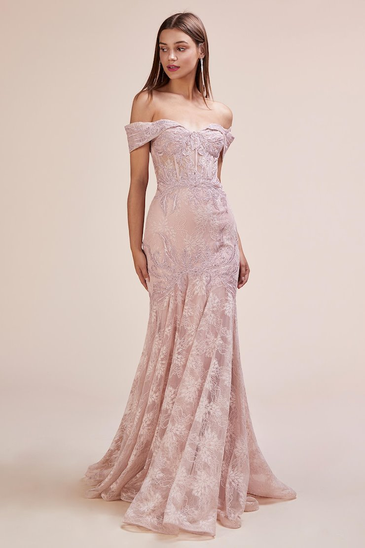 A&L Couture Style #A0666 Image