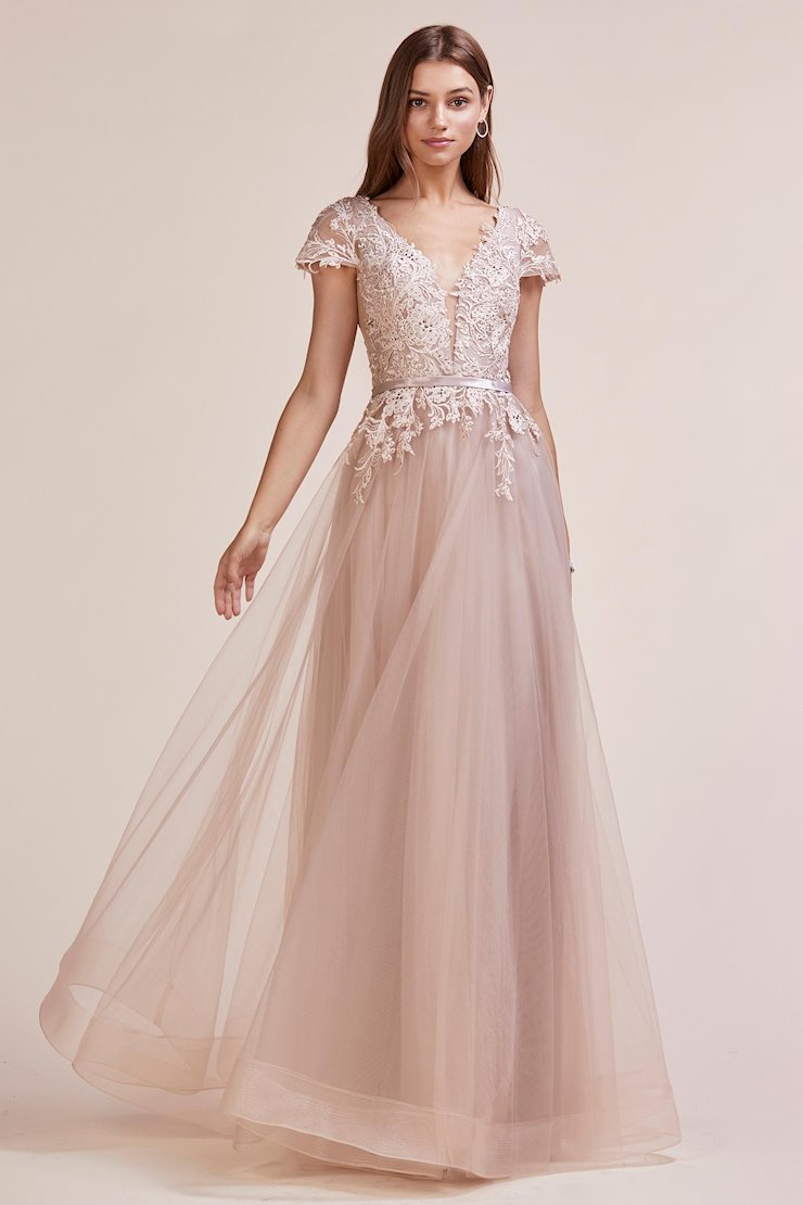 A&L Couture Style #A0673 Image