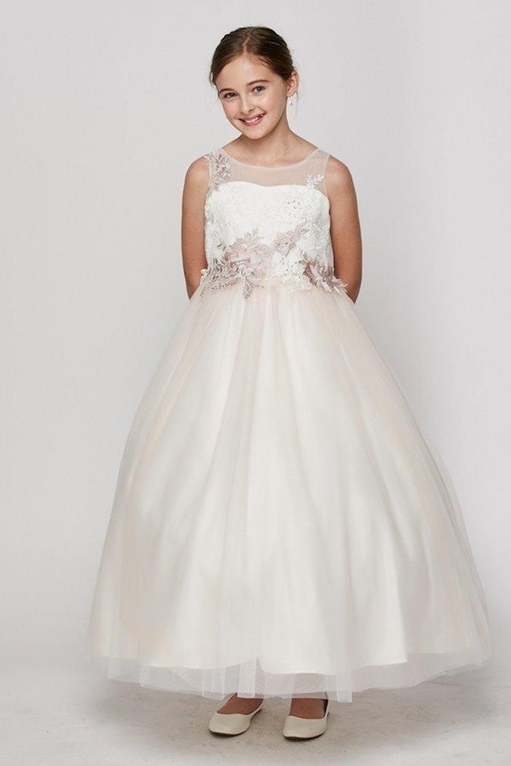 Cinderella Couture 5031