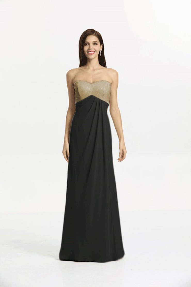 Gather and Gown #8119 Image