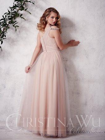 Christina Wu Celebration 22646