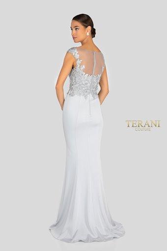 Terani 1913M9398