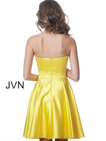 JVN JVN1717