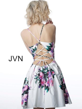 JVN JVN2176